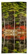 Harold Parker State Park In The Fall Beach Towel