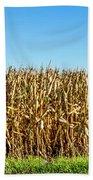 Harvest Time Beach Sheet