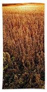Harvest Twilight Beach Towel