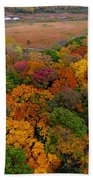 Havenwoods State Forest Beach Towel
