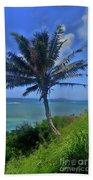 Hawaii Palm Beach Towel