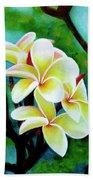 Hawaii Tropical Plumeria Flower #225 Beach Towel