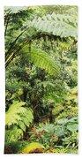 Hawaii Tropical Rainfores Beach Towel