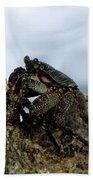 Hawaiian Crab Legs Beach Towel