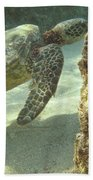 Hawaiian Green Sea Turtle Beach Towel