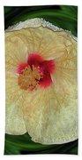 Hawaiian Hybiscus Beach Towel