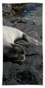 Hawaiian Monk Seal Ilio Holo I Ka Uana Beach Towel