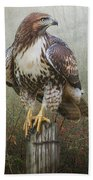 Hawk And Barbed Wire Beach Towel