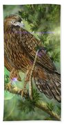 Hawk In The Evergreens Beach Towel by Darren Cannell