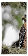Hawk On Watch Beach Sheet