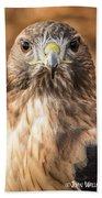 Hawk Eyes Beach Towel