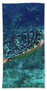Hawksbill Sea Turtle 5 Beach Towel