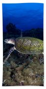 Hawksbill Turtle Swimming With Diver Beach Sheet
