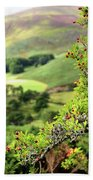 Hawthorn Branch With View To Wicklow Hills. Ireland Beach Towel