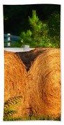 Hay Bales Beach Sheet