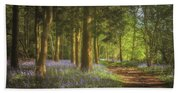 Hay Wood Bluebells 3 Beach Sheet