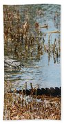 Head And Tail Beach Towel