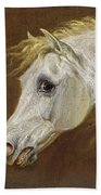 Head Of A Grey Arabian Horse  Beach Towel