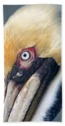 Headshot Brown Pelican Beach Towel