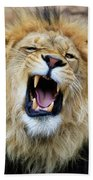 Hear Me Roar Beach Towel