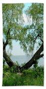 Heart Tree On Lake Saint Clair Beach Towel