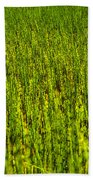 Heather Lake Grass 2 Beach Towel