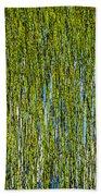 Heather Lake Grass Beach Towel
