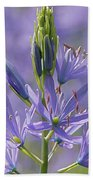 Heavenly Blue Camassia Beach Towel