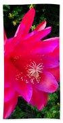 Heavenly Epiphyllum Orchid Cactus Beach Towel