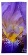 Heavenly Iris Beach Towel