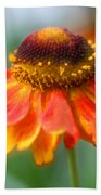 Heavenly Zinnia Beach Towel