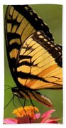 Hebrews Scripture Butterfly Beach Towel