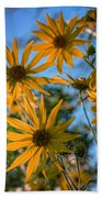 Helianthus Giganteus Beach Towel