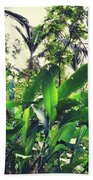 Heliconia Cluster Beach Towel