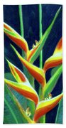 Heliconia Flowers #249 Beach Sheet