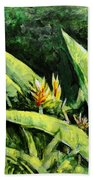 Heliconia Flowers 6 Beach Sheet