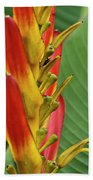 Heliconia Beach Towel
