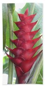 Heliconia Hot Flash Beach Towel