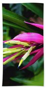 Heliconia Subulata - Wild Plant Series Beach Sheet