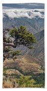 Hells Canyon Beach Towel