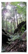 Hemlock Gorge Beach Towel
