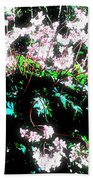 Her Diadem Beach Towel by Eikoni Images