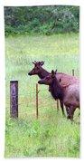 Herd Of Elk Leaping - Western Oregon Beach Towel