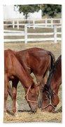 Herd Of Horses Ranch Scene Beach Towel