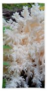 Mushroom Hericium Coralloid Beach Towel