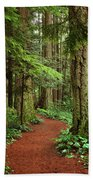 Heritage Forest 2 Beach Towel