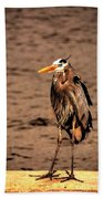 Egret Bad Feather Day Beach Towel