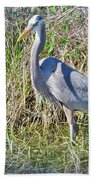 Heron In The Wetlands Beach Towel