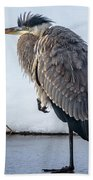 Heron On Ice Beach Towel