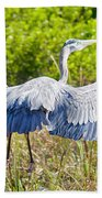 Heron On The Rise Beach Towel